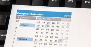 Compact Check Calendar 2014